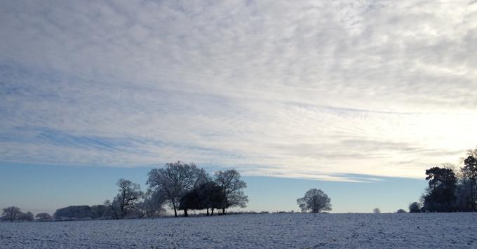 snowy-field-2