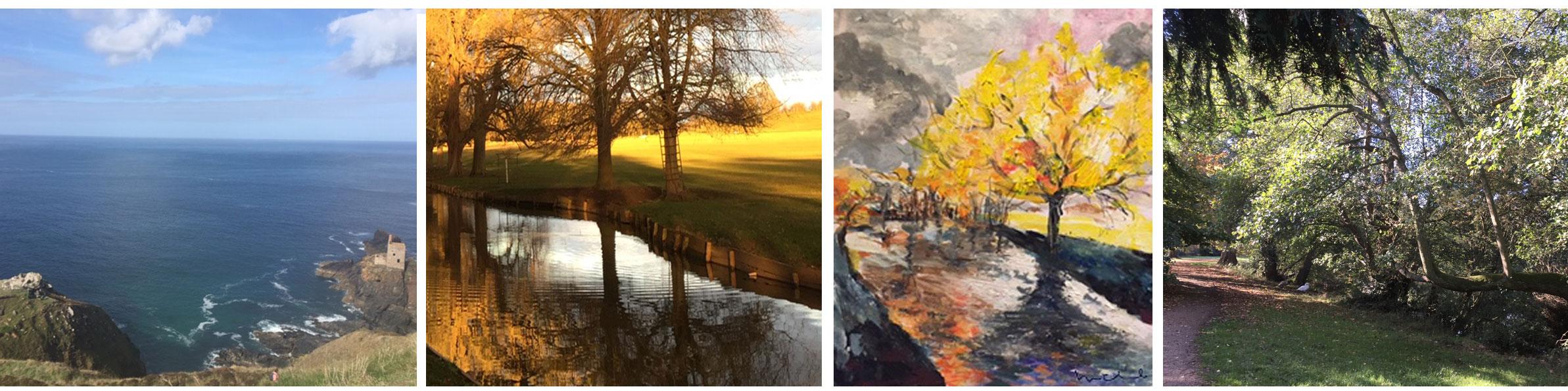 Michal's Paintings